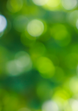 Green blurred background