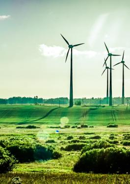 Field with wind turbine